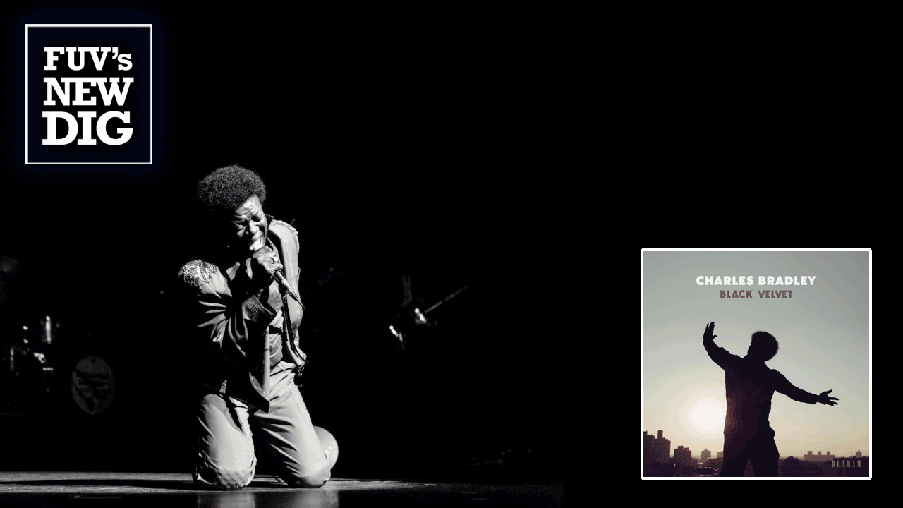 Charles Bradley (photo by Isaac Sterling)