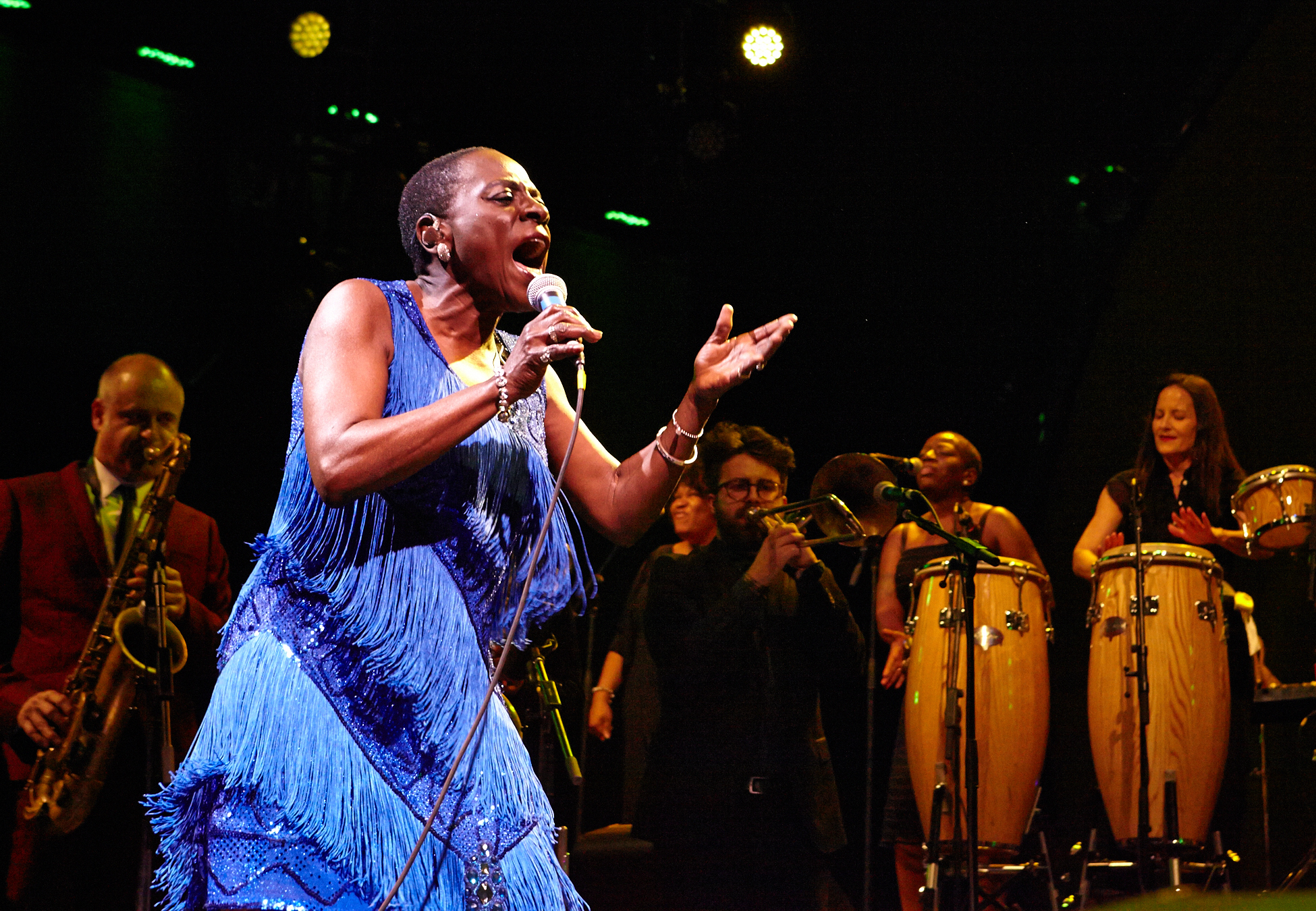 Sharon Jones & The Dap-Kings at BRIC Celebrate Brooklyn! Festival