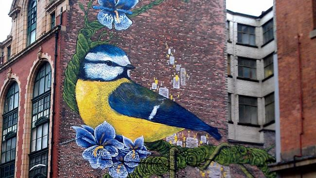 Bird of Northern Quarter, Manchester (photo by Mr. Mark via Creative Commons)
