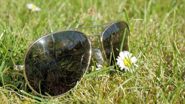 sunglasses-grass