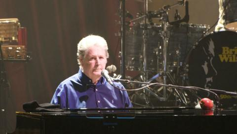 Brian Wilson (photo from artist's website)