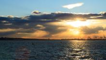 Fordham Conversations: The Sea Life and Comeback of NY Harbor