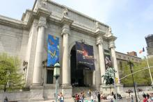 New York City Museum Plans Adults-Only Sleepover