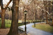 NYC Says Ban On Smoking In City Parks Is Working