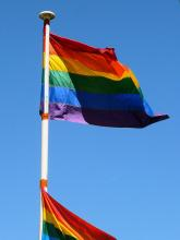 New York Homosexual Men Accuse New Jersey Therapy Group of 'False Promises'