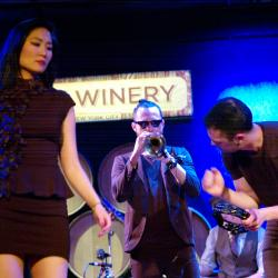 San Fermin at City Winery (photo by Helena Petersen)