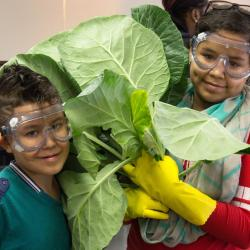 Teens for Food Justice
