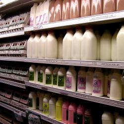 Schumer: Fiscal Cliff Could Hike NY's Milk Prices