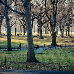 NY Parks Advocates to Seek More Funds from State