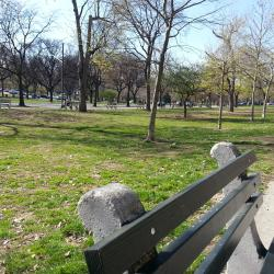 Report: Bronx Parks Need Lots of TLC