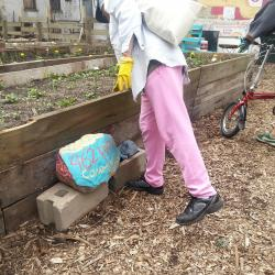 Strike a Chord: Non-Profit Helps Residents Turn Vacant Lots Into Green Spaces