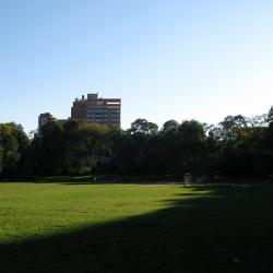 Advocacy Group Assesses NYC's Parks