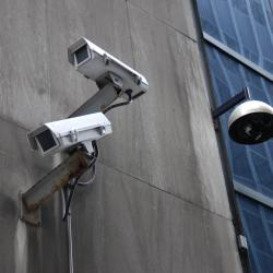 Eyes on the Street: Seeking Justice and Pressuring Freedoms
