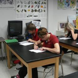 New York Releases Half of Statewide Test Questions