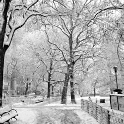 Snow to Disrupt Morning Commute for Metro New Yorkers