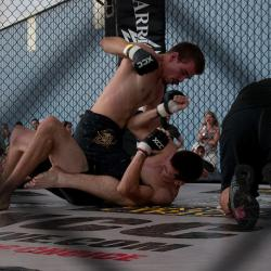 New York State Senate Passes MMA Legislation