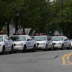 NYC Council Passes Plans to Reign in the NYPD