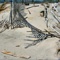 More Returning to NJ's Barrier Islands