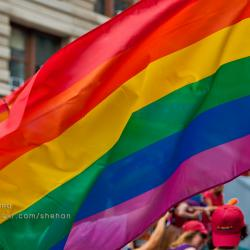 Boy Scout Members to Help Lead NYC Pride March