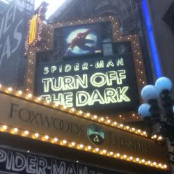Broadway Groupies: Rushing a Show