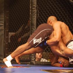 Efforts to Legalize Mixed Martial Arts in New York Faces a Tough Fight