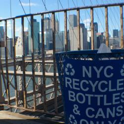 City Goes Greener -  Expands Recycling and Composting Programs