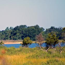 Popular NY State Park Damaged by Sandy Will Open