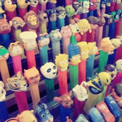 """Die-Hard Pez-Heads"" Celebrate"