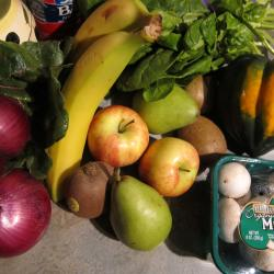 Pilot 'Mobile Produce' Program Looking for Vendor