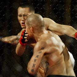 New York Lawmaker Wants To Put A Chokehold on Mixed Martial Arts