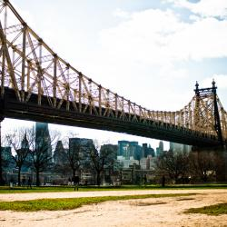 Cityscape: Getting to Know Queens