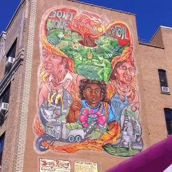 South Bronx Rising, Like a Phoenix from the Ashes.