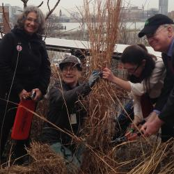 Manhattan's High Line Park Officially Kicks Winter to the Curb
