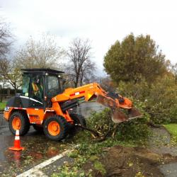 Cleanup Crews in the Bronx Attempt to Clear City Streets After Hurricane Sandy