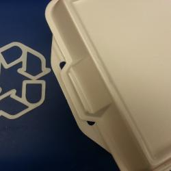 Bloomberg Bans Styrofoam in State of City