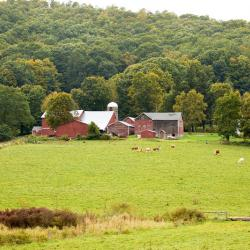Advocates Urge CT Lawmakers to Protect Community Investment Act