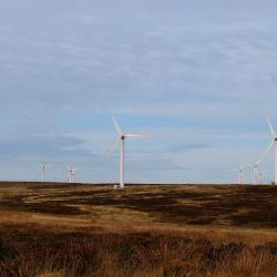 wind-farm-windmills